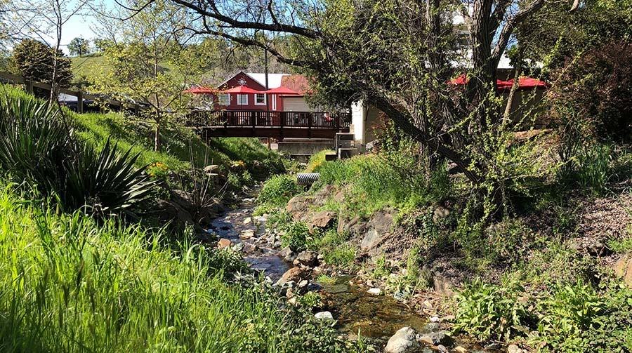 spring creek runs through amador city